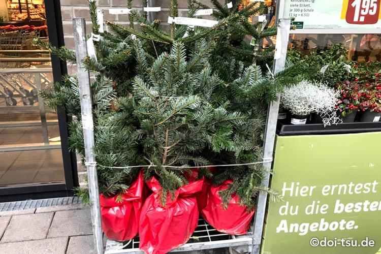 ドイツのスーパーに売られている生のクリスマスツリー用の木