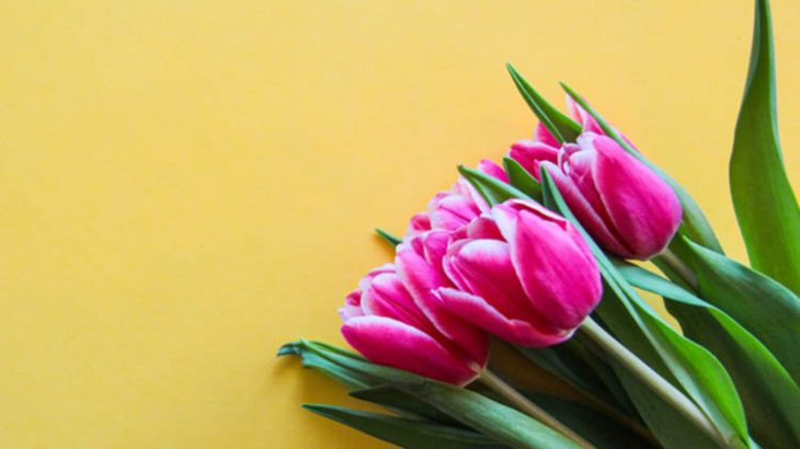 【ドイツのイースター】定番の過ごし方は?復活祭に食べるもの、イベントや風物詩など在住者が紹介!